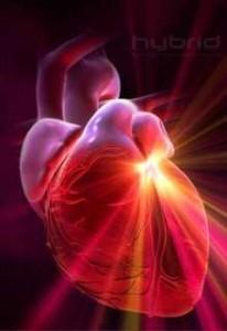 La cardiochirurgia mininvasiva e postoperatorio